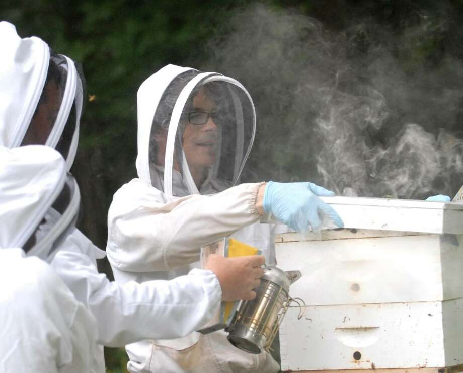 Ray Simon removes the cover off of one of the three bee hives at his Stanwich Road home, Greenwich, as fellow beekeepers, Rick Margenot, left, and Jeff Brown, center, use a bee smoker, which calms the bees, during an inspection of the hive, Thursday evening, July 22, 2010. Photo: Bob Luckey / Greenwich Time