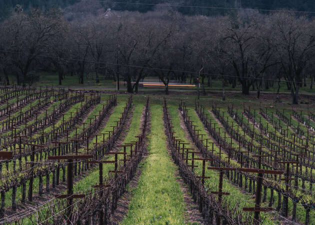 The top 10 Napa County wineries for a wine education