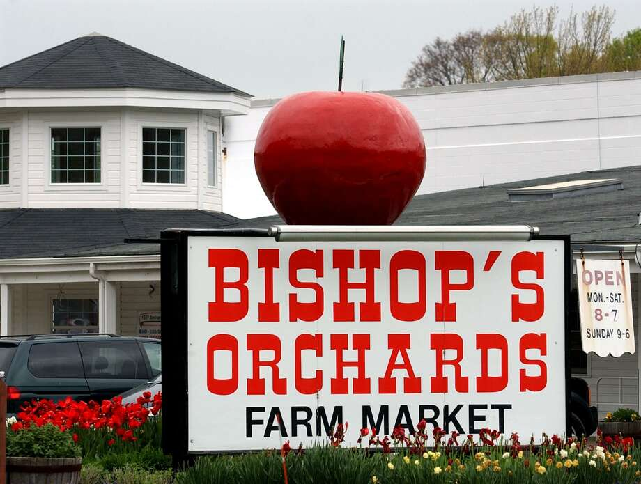 Bishop's Orchards solar project is the largest Connecticut farm energy project. Photo: File Photo