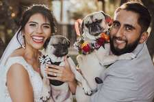 """""""My wife and I are dedicated to rescuing pugs. Our grumble (word for a herd of pugs) currently consist of Hiro and Harlow.""""- Agustin Garfias, Spectrum News morning anchor"""