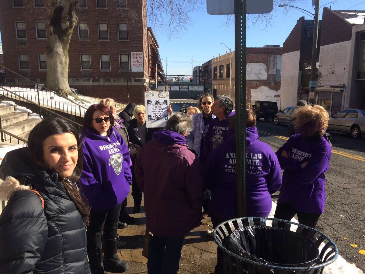 Animal rights supporters outside the Golden Hill Street courthouse in Bridgeport, Conn., prior to the arraignment of Heidi Lueders on Wednesday, Feb. 13, 2019.