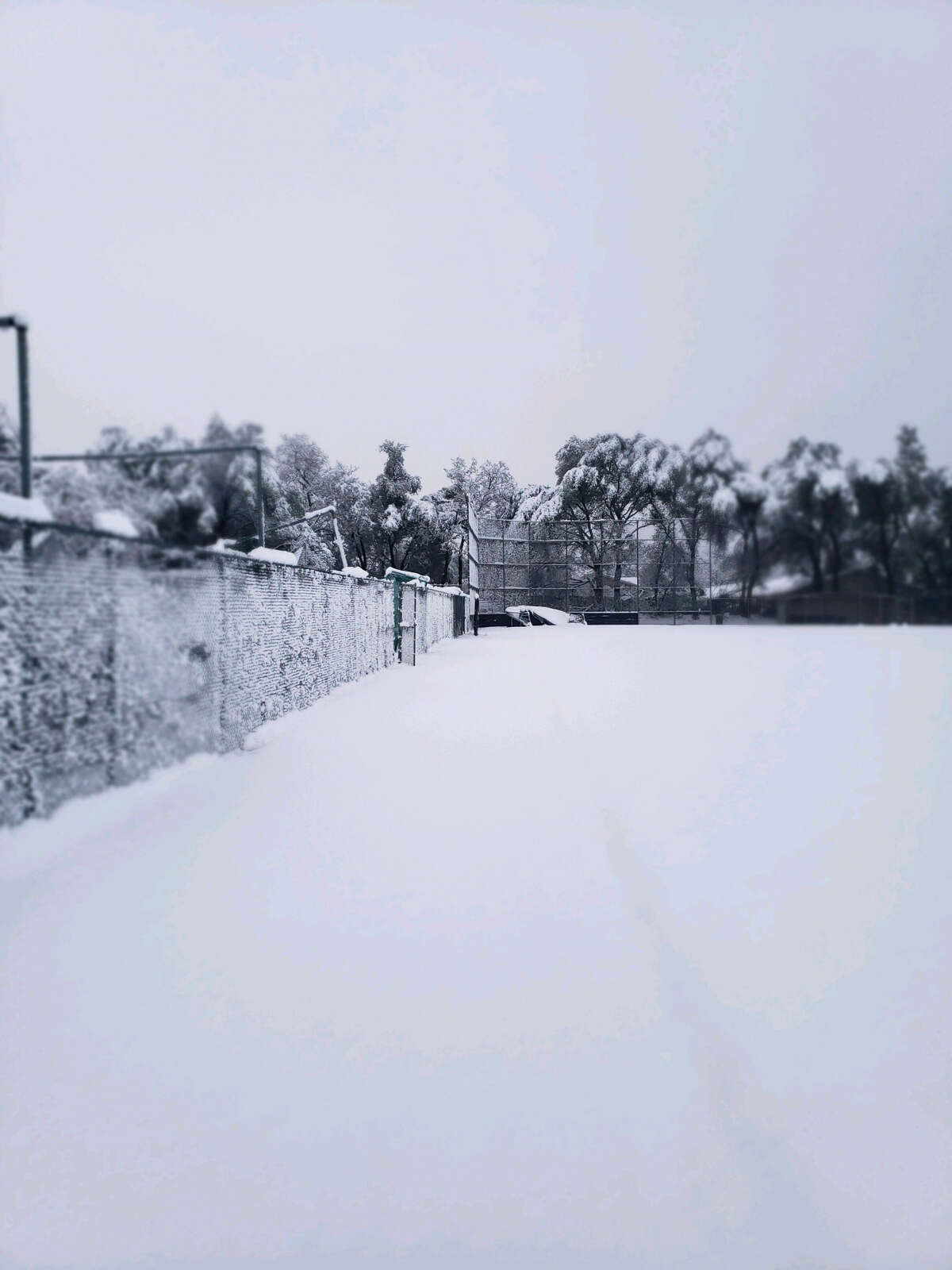 Inches of snow pile up at Enterprise High School in Redding following an overnight storm on February 13th.