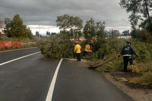 A tree was blown over onto the southbound I-880 on-ramp from Alvarado and Niles, according to CHP Hayward.