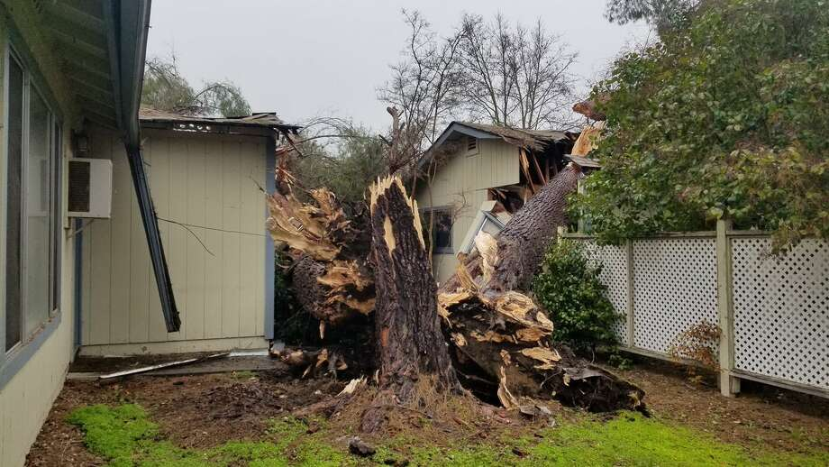 "In Atascadero in San Luis Obispo County, a massive tree fell onto a house, displacing its residents. ""This storm is not only bringing rain, but heavy and sustained winds that stress trees in the already saturated soil,"" the Atascadero Fire Department warned. Photo: Atascadero Fire"