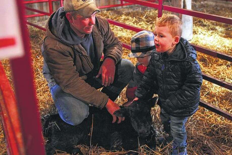 Austin Tomhave (left) lets Noah Eyth (center) and Logan Freeman pet a 1-day-old calf Wednesday at Tomhave Farm. The farm hosted tours of the calving barn for a Jacksonville Area Chamber of Commerce event on raising beef cattle and regional agribusiness. Photo: Rosalind Essig | Journal-Courier