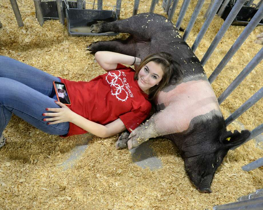 Trinity Reagan of Katy High School relaxes with her pig named Pickles prior to the start of the 76th Annual Katy ISD FFA Livestock Show and Katy Rodeo at the Gerald D. Young Agricultural Sciences Center in Katy, TX on Wednesday, February 13, 2019. Photo: Craig Moseley/Staff Photographer