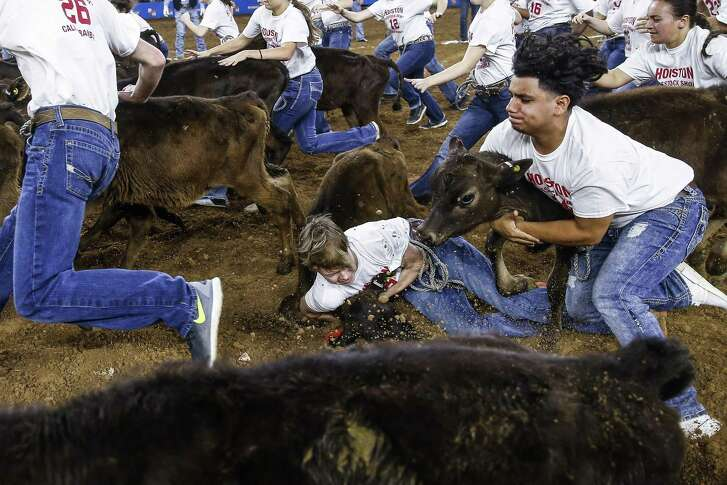 Calf scramblers race after calves during Round 2 of Super Series I at the Houston Livestock Show and Rodeo Wednesday, Feb. 28, 2018 in Houston. (Michael Ciaglo / Houston Chronicle)