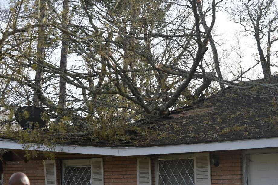 A tree fell on two homes on El Paso Avenue in Beaumont Thursday afternoon. Photo: Eric Williams