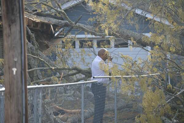 A tree fell on two homes on El Paso Avenue in Beaumont Thursday afternoon.