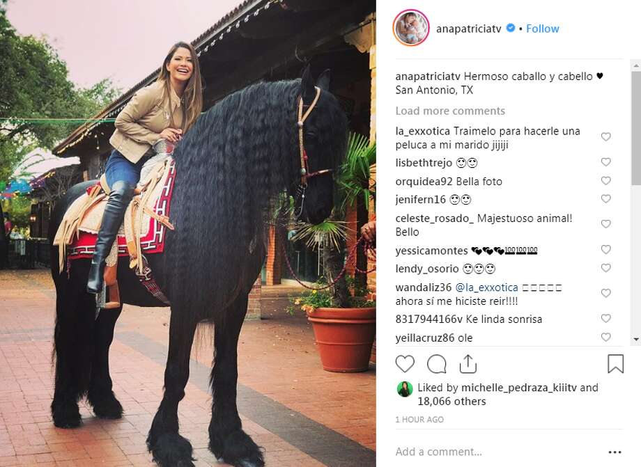 anapatriciatv: Hermoso caballo y cabello  San Antonio, TX Photo: Instagram Screengrab
