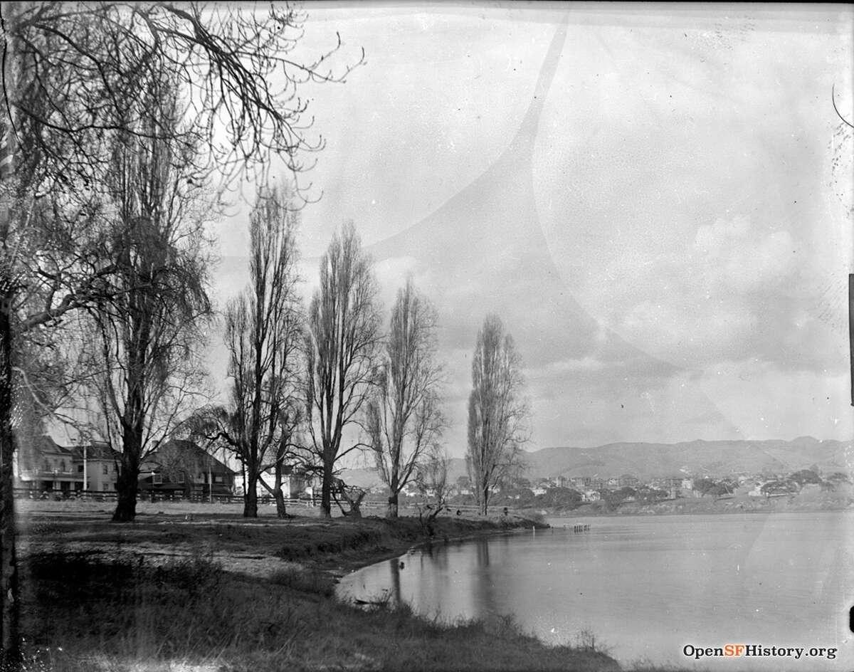 1900 Willows beside Lake Merritt on April 23, 1900.