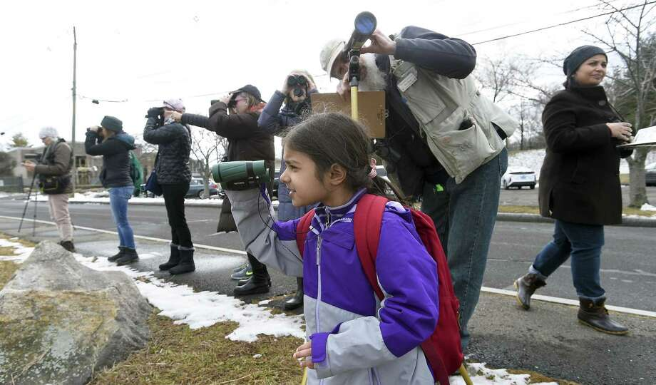 Malhaar Sethi, 5, of North Stamford uses her binoculars to observe birds in Greenwich Harbor. Audubon Greenwich join with birding enthusiasts and naturalists to count water and land birds in Greenwich Harbor, as part of the Cornell Lab of Ornithology's annual Great Backyard Bird Count, at Grass Island Park on Feb. 15, 2019 in Greenwich, Connecticut. Ducks, geese, loons and gulls are some of the birds that spend the winter on Long Island Sound. Photo: Matthew Brown / Hearst Connecticut Media / Stamford Advocate