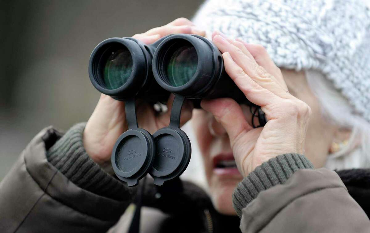 Each year, Greenwich Audubon Center participates in the annual Christmas Bird Count to monitor winter bird populations throughout North America. Teams of birders will head out this Sunday to count as many individual birds as possible in a given count area within 24 hours. All count participants are invited to gather at Greenwich Audubon Center at 5 p.m. Sunday to compile results and enjoy a complimentary dinner. For those interested in participating at Greenwich Audubon Center, contact Ted Gilman at tgilman@audubon.org or 203-930-1353. For those interested in joining a team in your neighborhood or conducting a feeder-watch, contact Cynthia Ehlinger at cynthia.ehlinger@gmail.com or 203-219-1963.