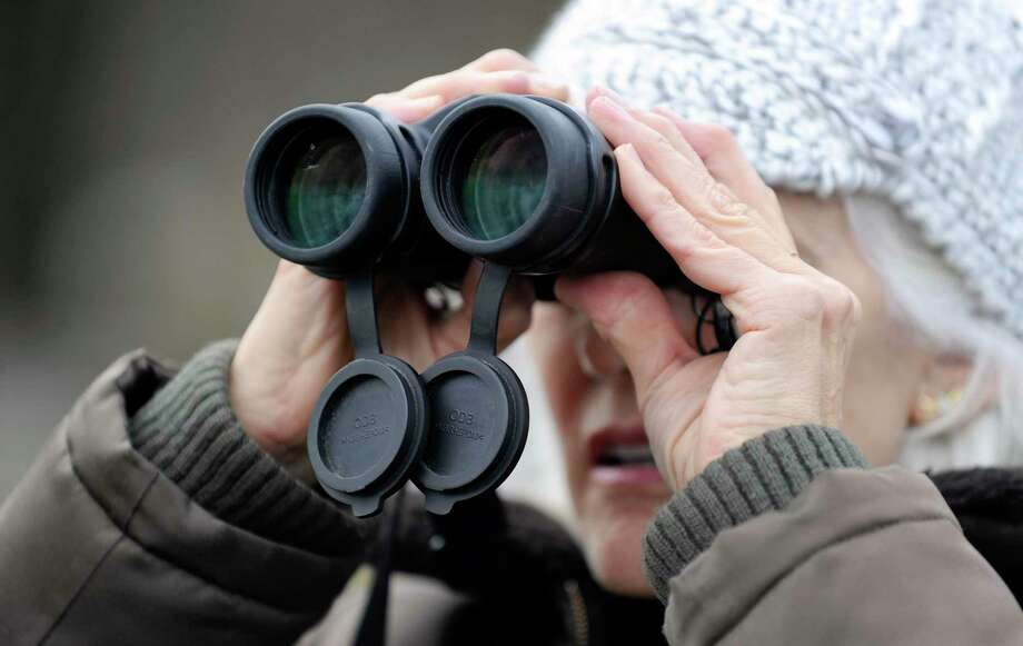 Each year, Greenwich Audubon Center participates in the annual Christmas Bird Count to monitor winter bird populations throughout North America. Teams of birders will head out this Sunday to count as many individual birds as possible in a given count area within 24 hours. All count participants are invited to gather at Greenwich Audubon Center at 5 p.m. Sunday to compile results and enjoy a complimentary dinner. For those interested in participating at Greenwich Audubon Center, contact Ted Gilman at tgilman@audubon.org or 203-930-1353. For those interested in joining a team in your neighborhood or conducting a feeder-watch, contact Cynthia Ehlinger at cynthia.ehlinger@gmail.com or 203-219-1963. Photo: File / Matthew Brown / Hearst Connecticut Media / Stamford Advocate