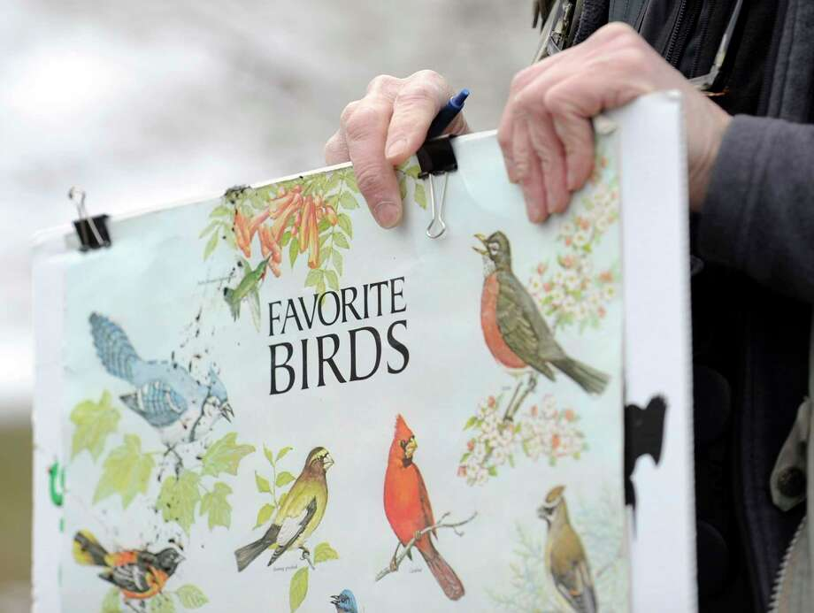 During the Sensory-Sensitive Saturday sessions, Audubon Greenwich provides relaxing nature films, natural artifacts with interesting textures, books and pictures. Photo: Matthew Brown / Hearst Connecticut Media File Photo / Stamford Advocate