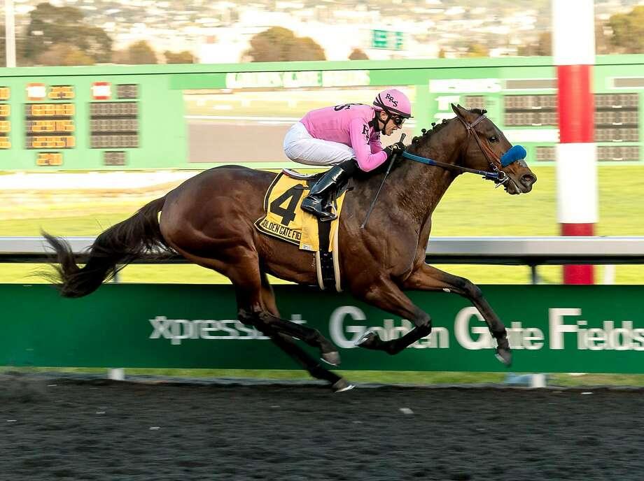 Anothertwistafate wins El Camino Real Derby