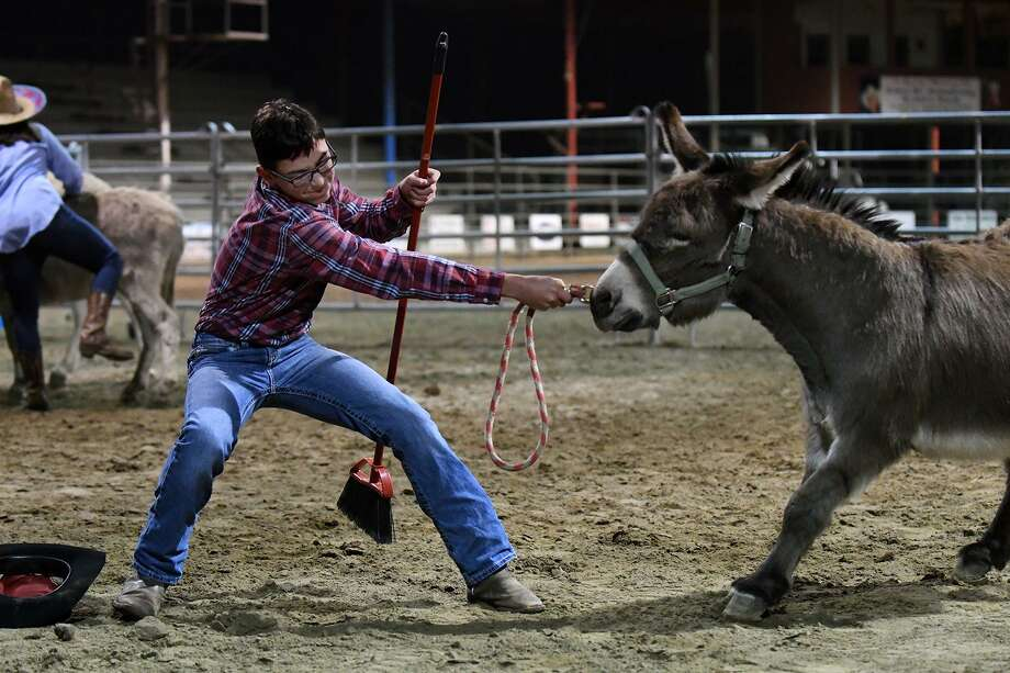 """Riley Chandler, 15, a freshman at Crosby High School and a member of the """"Outlaws"""" team, tries to convince his donkey to participate in their Donkey Polo game, sponsored by the Crosby Young Farmers at the Crosby Fairgrounds on Feb. 16, 2019.The donkeys for the event were supplied by Circle A Donkey Ball Show of Henry, TN. Photo: Jerry Baker, Houston Chronicle / Contributor / Houston Chronicle"""