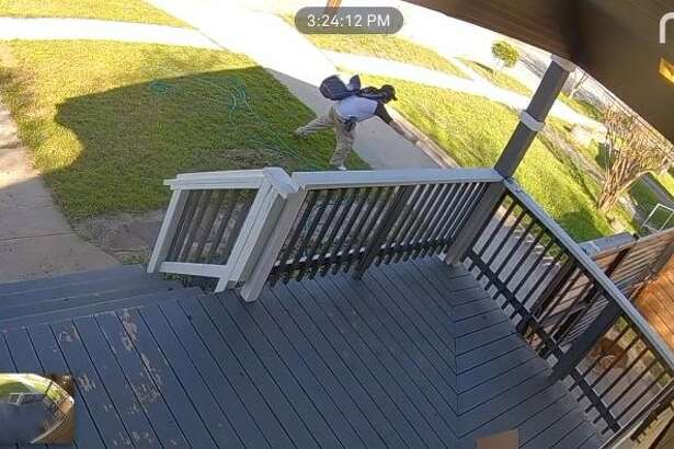 Will Charles' home surveillance footage appeared to show a postal worker pepper spraying his dog, Teddy, who was secured in the home's backyard on Feb. 15, 2019.