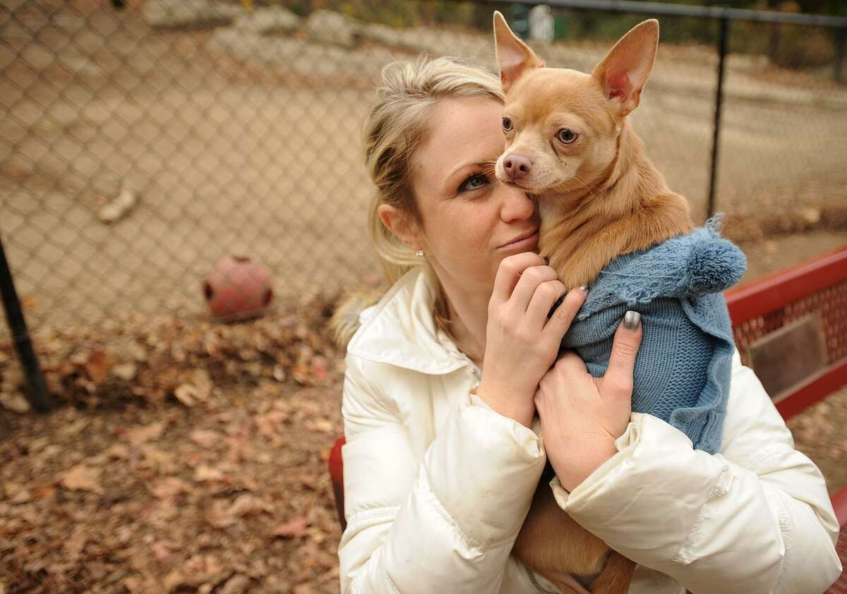 A Chihuahua named Prince and owner Ashley Ecker are shown during a 2013 visit to the Shelton Dog Park in this file photo.