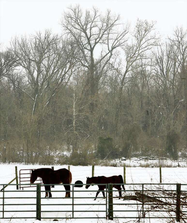 This pastoral scene is possible again by Wednesday morning around the Metro East, thanks to the latest winter storm heading to our area. Photo: John Badman | Hearst Illinois File Photo