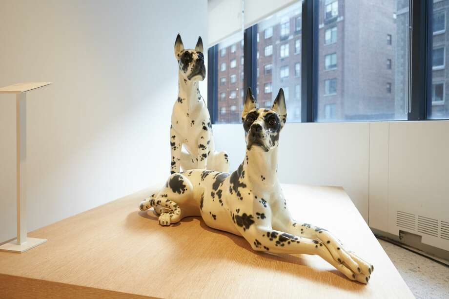 The American Kennel Club Museum of the Dog has opened at 101 Park Ave. in Manhattan. Photo: David Woo