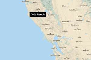 In a remote canyon valley rimmed with oak-dotted rolling hills two hours north of San Francisco, Cole Ranch is the country's smallest wine appellation with 150 acres and 50 of them planted with Cabernet Sauvignon, Merlot, Chardonnay, and Riesling vines.