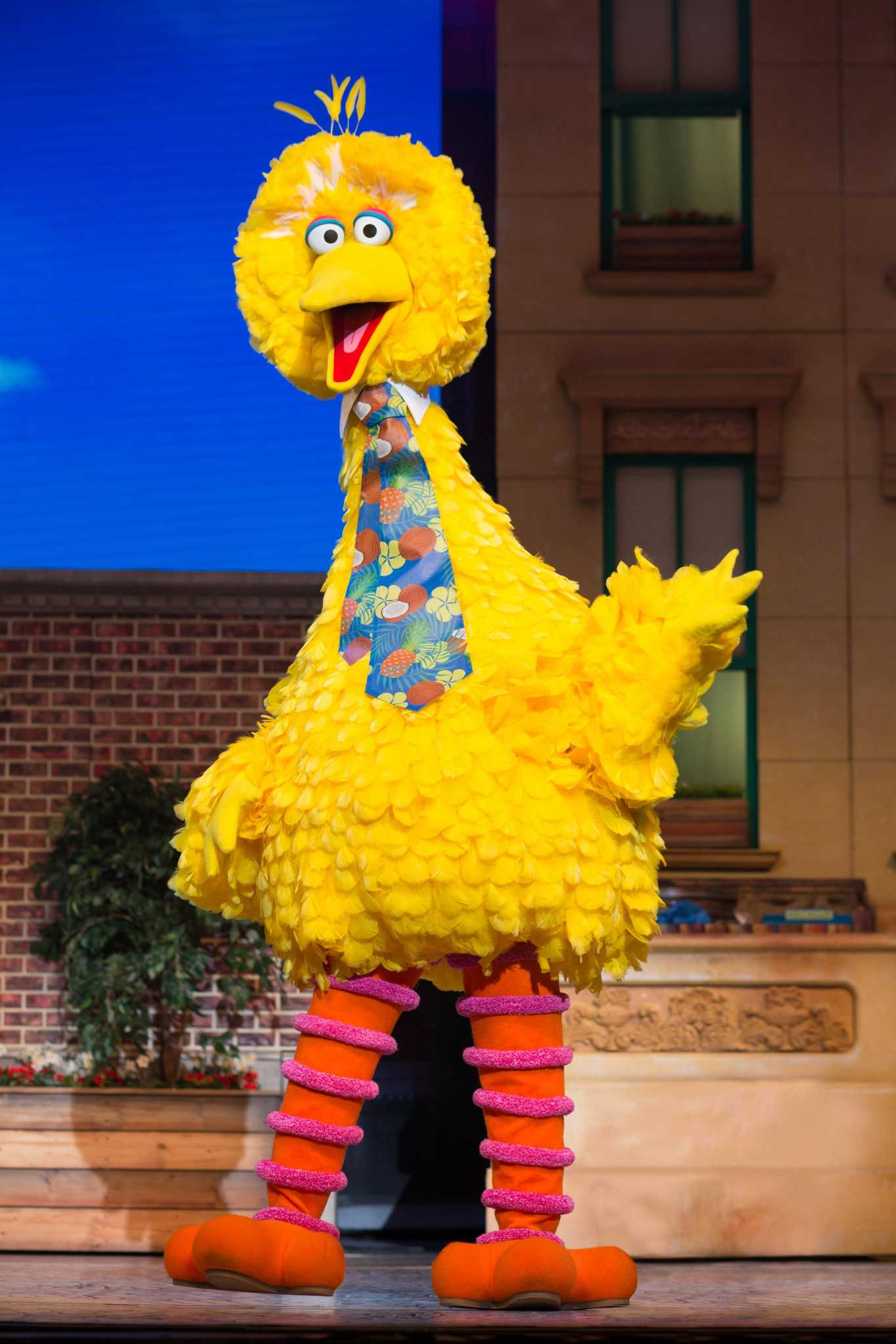 Sesame Street Live Find Your Magic At Toyota Oakdale