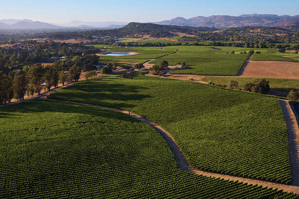 The Nathan Coombs Estate Vineyard in Coombsville, Napa Valley's newest officially recognized sub-region, where winemaker Paul Hobbs produces his latest expression of high-end Napa cabernet sauvignon.