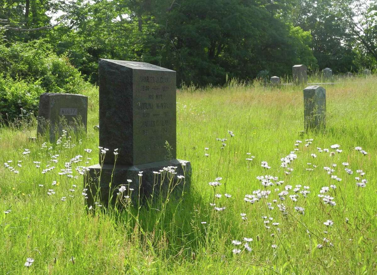 Wildflowers and tall grass were growing in Branchville Cemetery in early June.