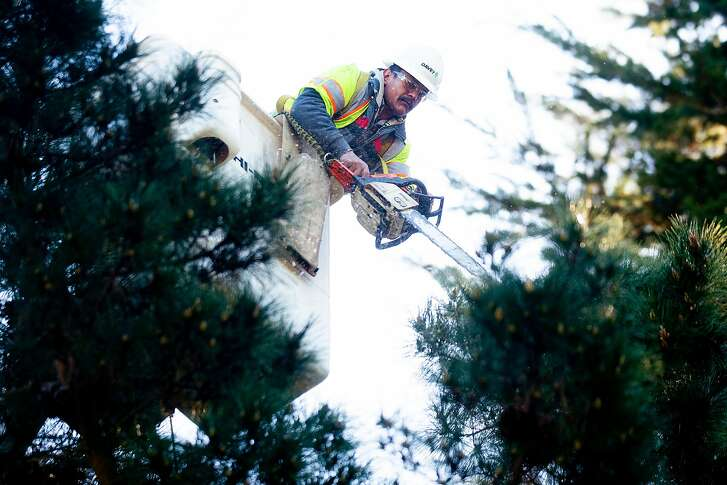 Jose Ibarra, a trimmer with Davey Tree Service, cuts branches near a power line in the Oakland Hills on Friday, Feb. 22, 2019, in Oakland, Calif.