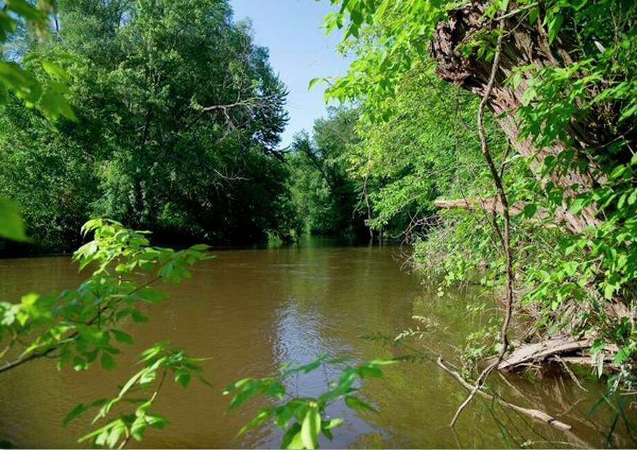 Along the banks of the Chippewa River, a small piece of land was purchased by Peter and Cameron Szok with the intent to donate the property to the Chippewa Watershed Conservancy as a resource to the community. (Photo provided)