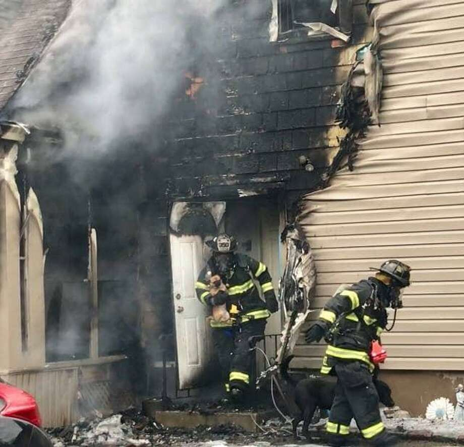 Five dogs are safe after a fire damaged a home on Stratfield Road on Saturday afternoon. Photo: / Fairfield Fire Department /Contributed Photo