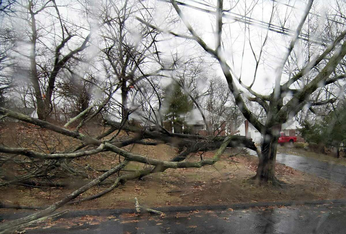 Part of a tree is down at a home along Main Street in West Haven, Conn., on Wednesday Feb. 28, 2018. A nor'easter is bringing high winds and rain throughout the region.