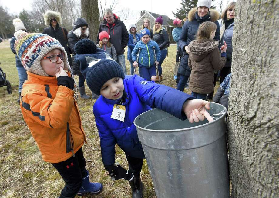 From left, Ryan Robison, 5, and Jack Soterakis, 6, both of Greenwich, taste the sweetness of pure maple tree sap dripping from a tap of a Sugar Maple Tree during the Greenwich Land Trust annual Maple Sugar Day at Mueller Preserve on Saturday, Feb. 23, 2019 in Greenwich, Connecticut. The event featured demonstration stations, candy crafting, arts and crafts and activities for the whole family. Photo: Matthew Brown / Hearst Connecticut Media / Stamford Advocate