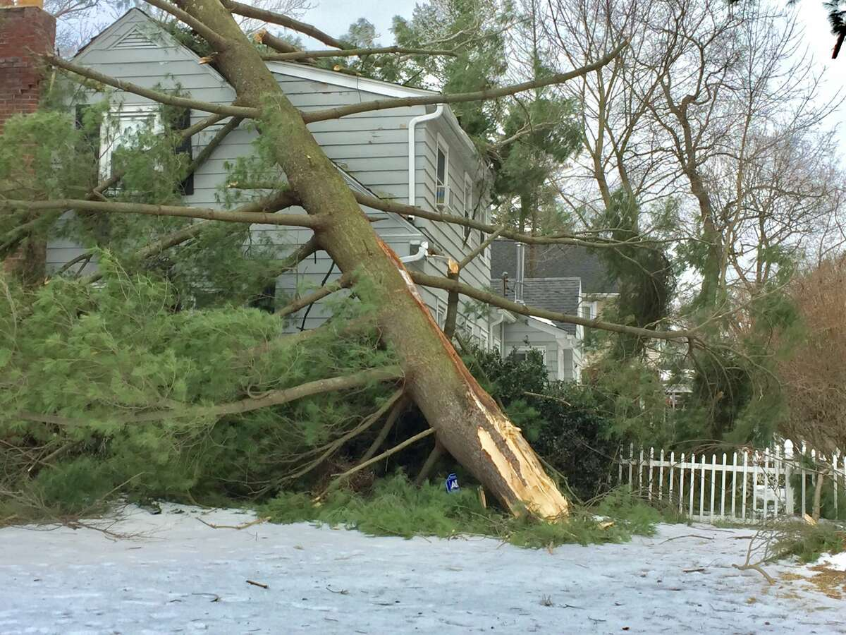 A pine tree crashed into a home on Winnie Road in Bethlehem on Monday. The region was rocked with severe wind gusts that brought down trees, utility poles and power lines around the region.