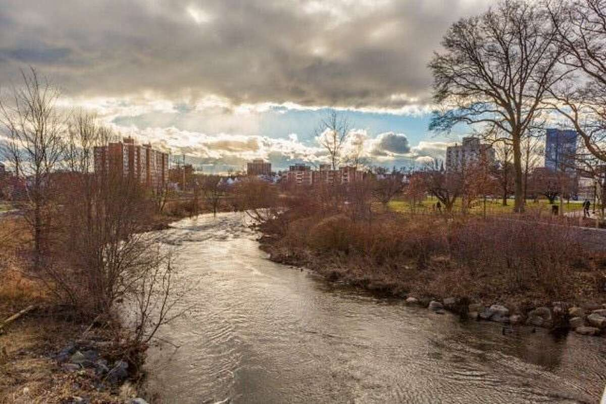 One of the Mill River Park project's objectives was to revitalize the river. Neglected and polluted, it became a public menace that too often dumped its floodwaters on downtown Stamford.