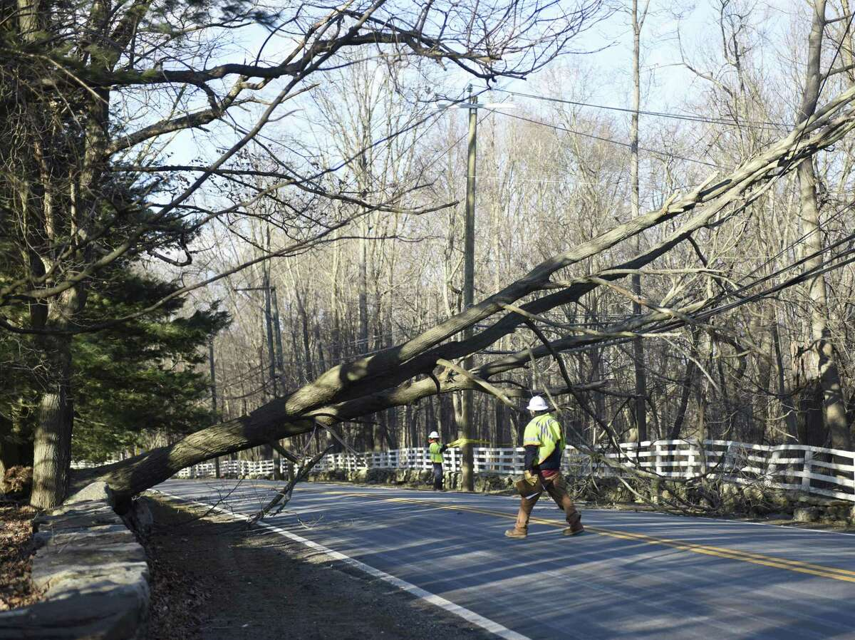 A fallen tree causes a road closure at the intersection of North Street and Hurlingham Drive in northern Greenwich, Conn. Monday, Feb. 25, 2019. The area encountered extremely heavy winds Monday that downed trees causing property damage and closing roads.