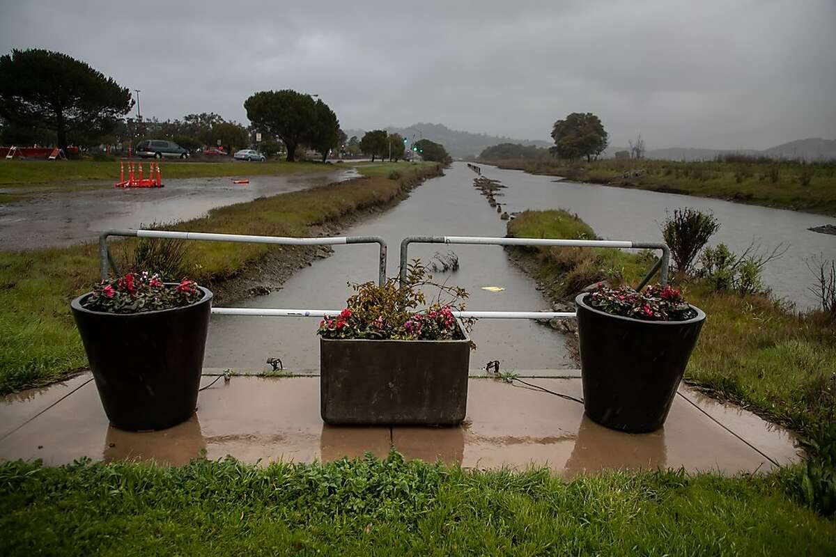 Flower pots at the Corte Madera Shorebird Marsh at 7 a.m. during the storm on Monday, Feb. 25, 2019 in Larkspur, CA.