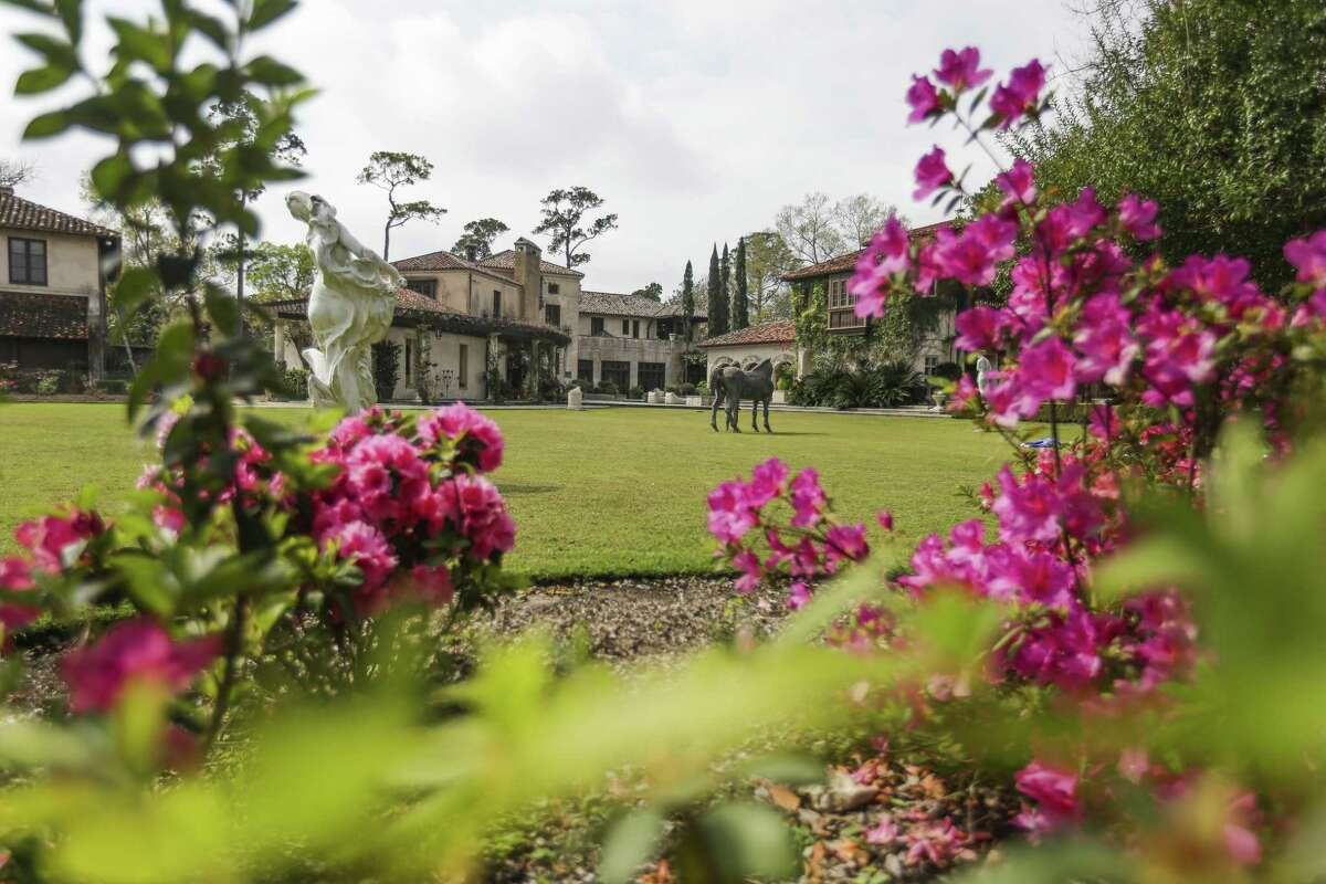 The 84rd Azalea Trail heralds the beginning of Spring this weekend.( Michael Ciaglo / Houston Chronicle )