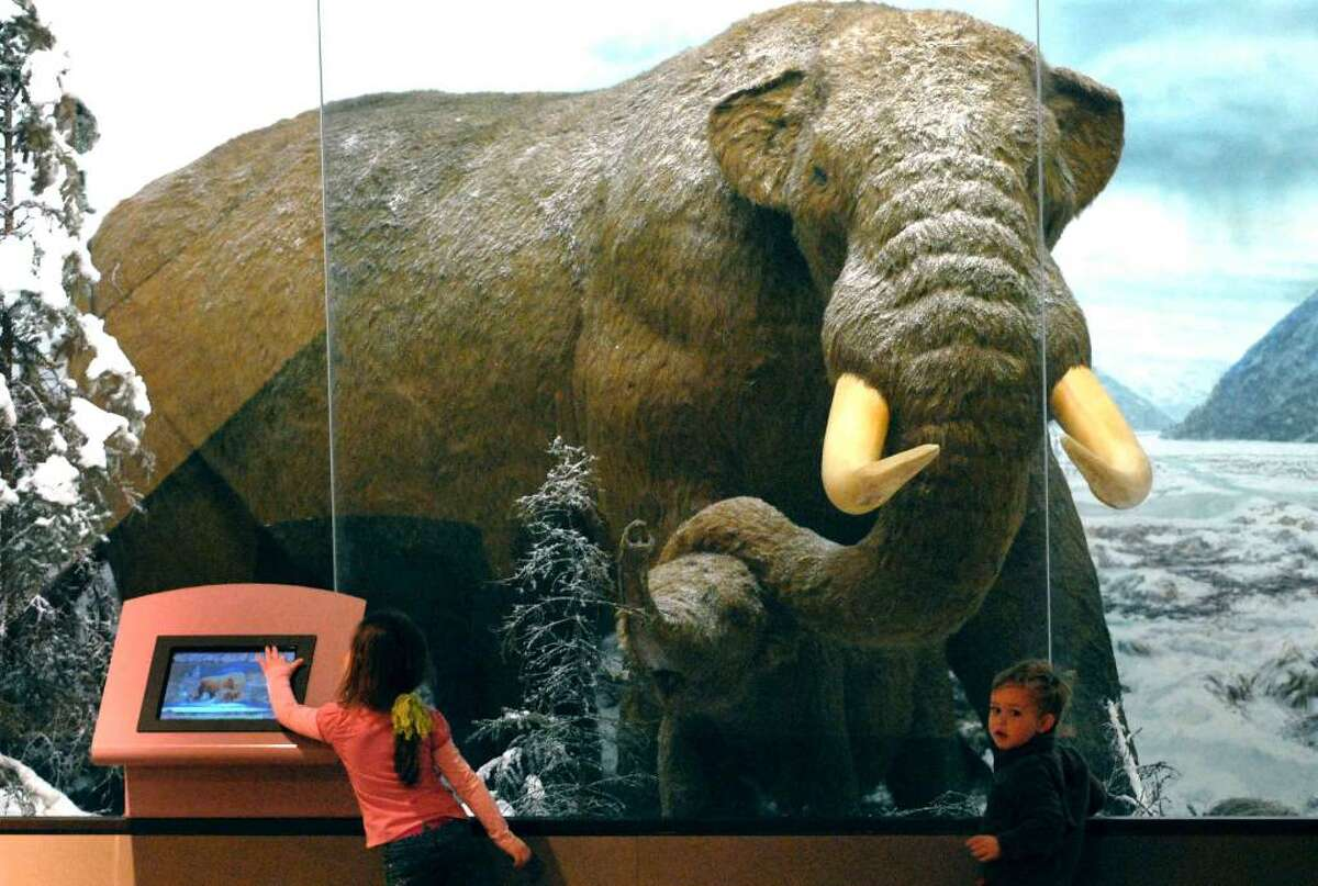 Four-year-old Miranda King, left, and her two-year-old brother Ethan King check out the Mastodont and baby in an ice age diorama at the New York State Museum. (Michael P. Farrell / Times Union)