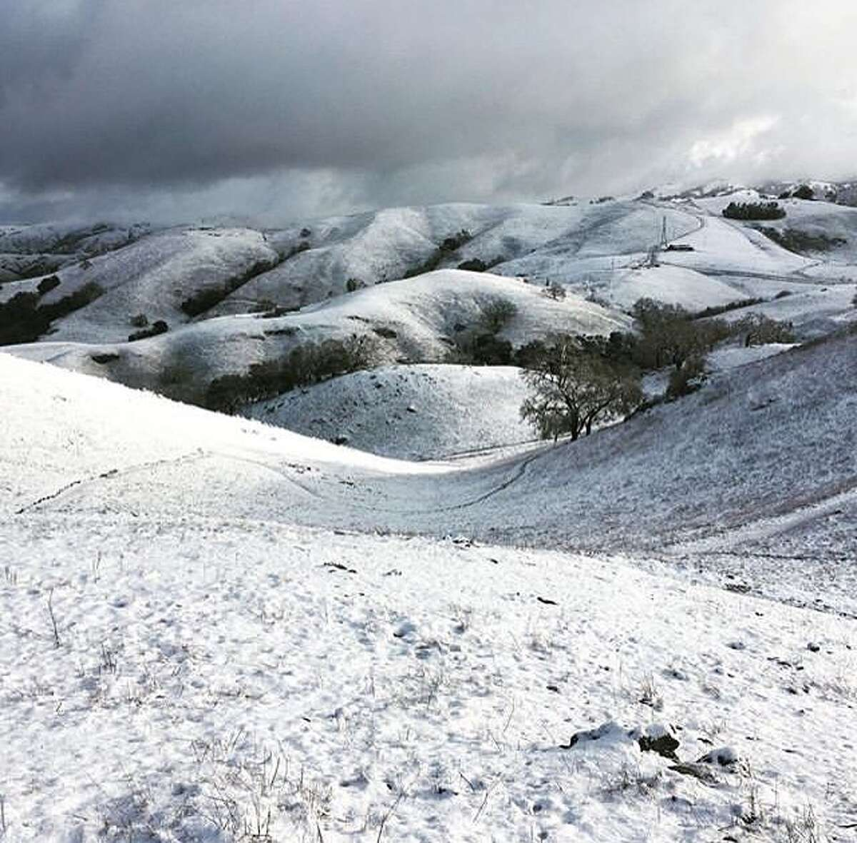 @lee.panich treked out to the Sierra Vista Open Space Preserve to photograph the unusual snowfall in early February.
