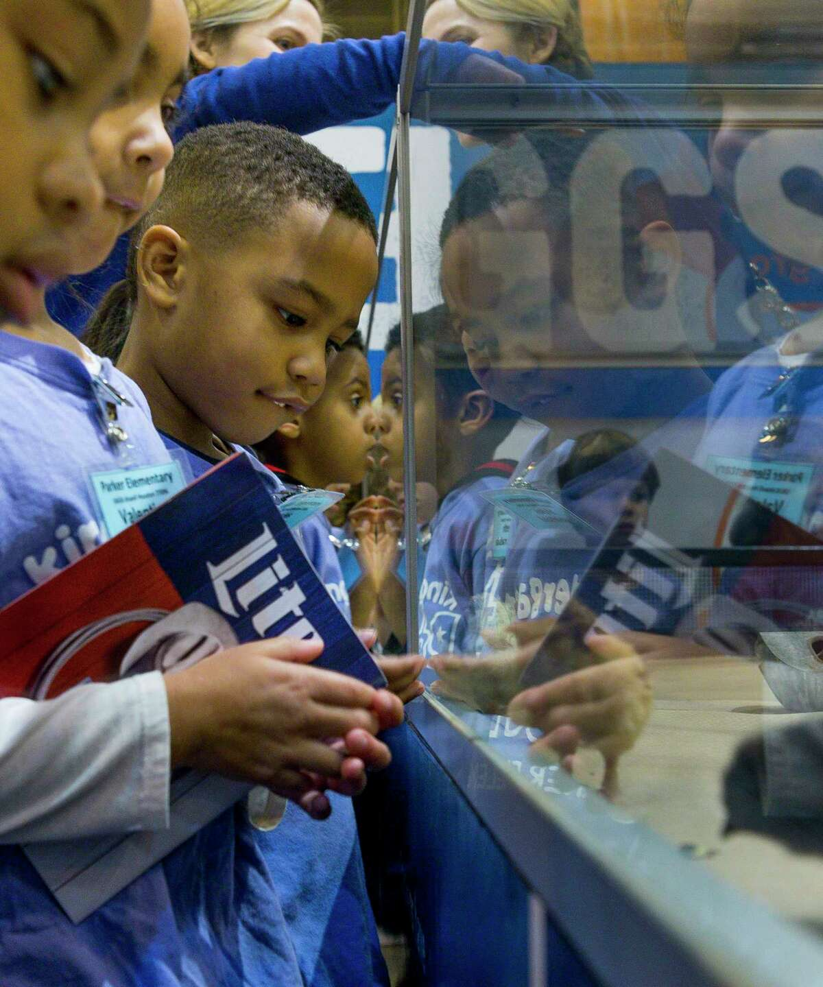 Kindergartners from Parker Elementary School look at newborn chicks at the Houston Livestock Show and Rodeo, Wednesday, Feb. 27, 2019 in Houston.