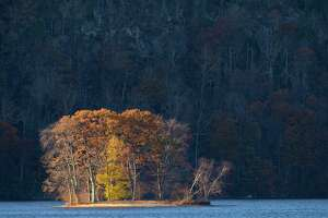 The last remaining leaves hanging onto the trees of City Island glow in the late afternoon light on Candlewood Lake, Danbury, Conn, on Friday, November 17, 2017.