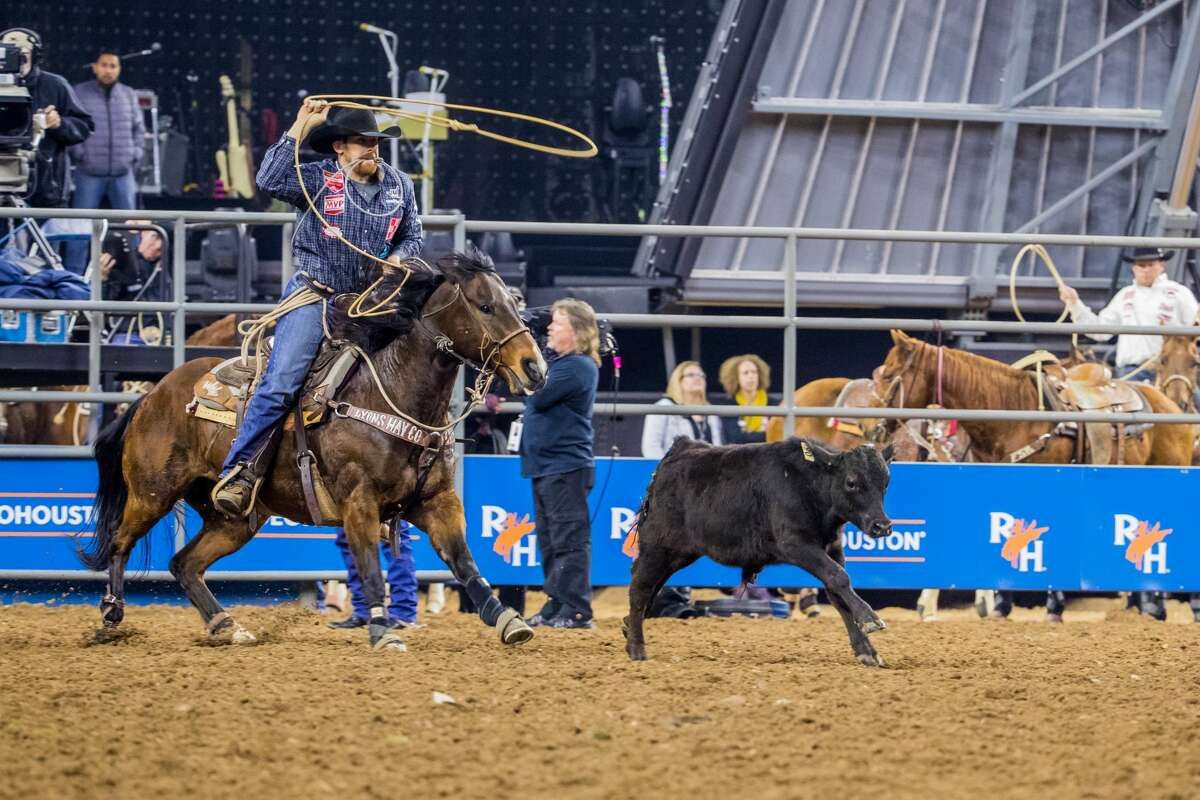 Tie-down roping: JudgingTie-down roping is a timed event. The fastest person to get the job done is the winner.