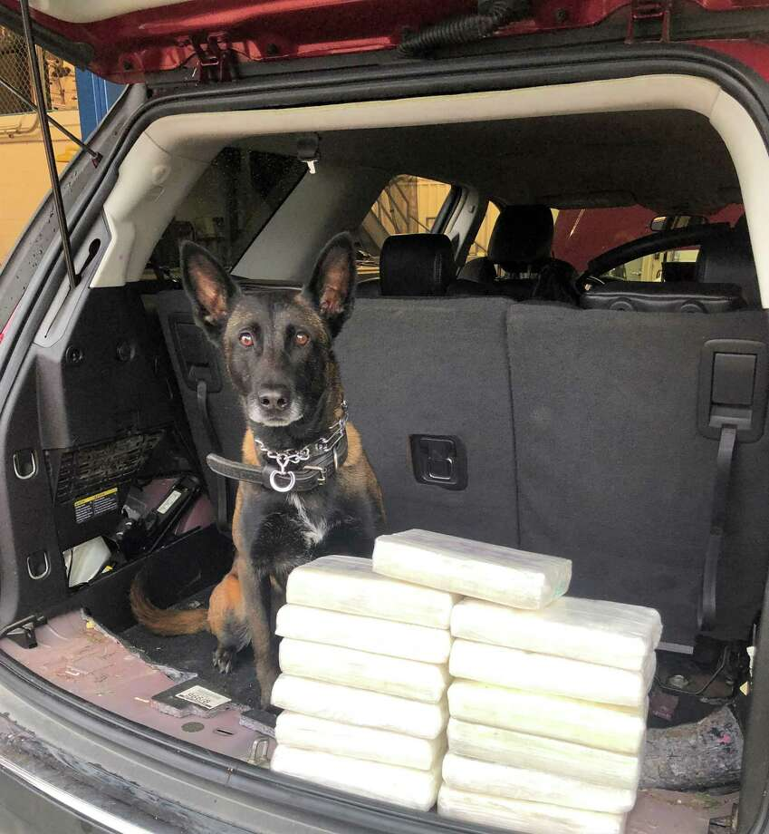On Thursday, Feb. 28, 2019, a Fort Bend County Sheriff's Office interdiction K-9 team conducted a traffic stop on U.S. 59 northbound near Rosenberg. During the stop, cocaine with a street value estimated at more than $700,000 was recovered. Photo: Fort Bend County Sheriff's Office