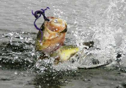 March brings big bass, full lakes and The Show