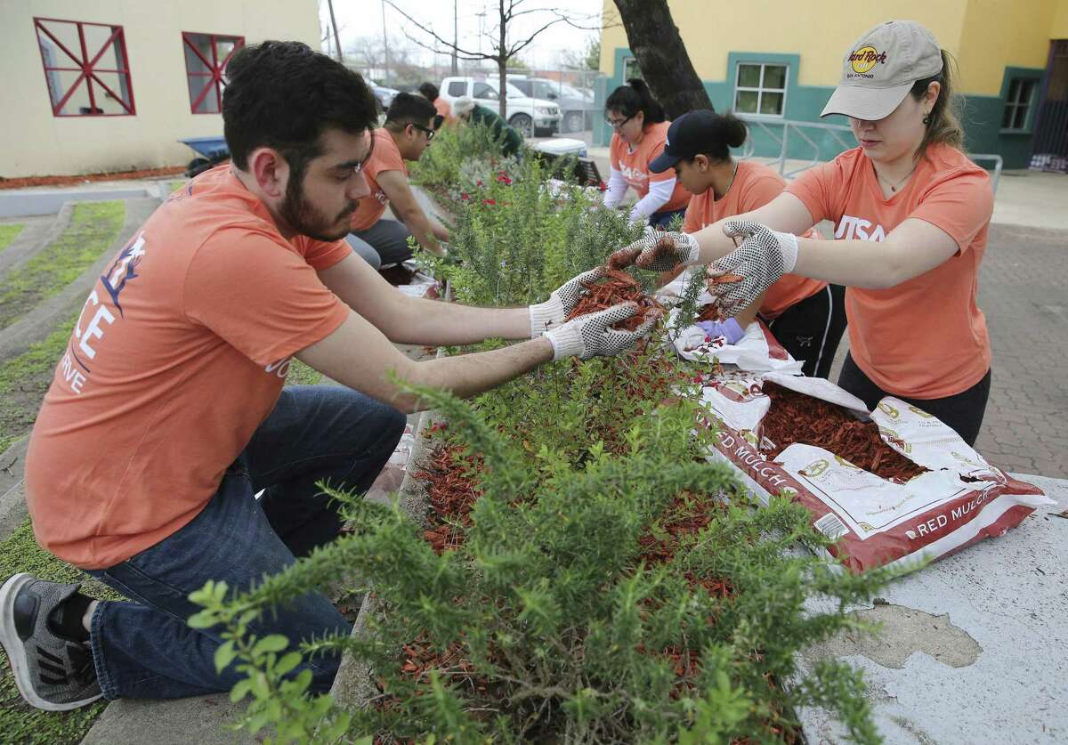 Jacob Minjarez, left, senior executive secretary for City Council District 5, gets mulch from Michelle Garcia, a District 5 intern and UTSA student, as they volunteer at Plaza Guadalupe.