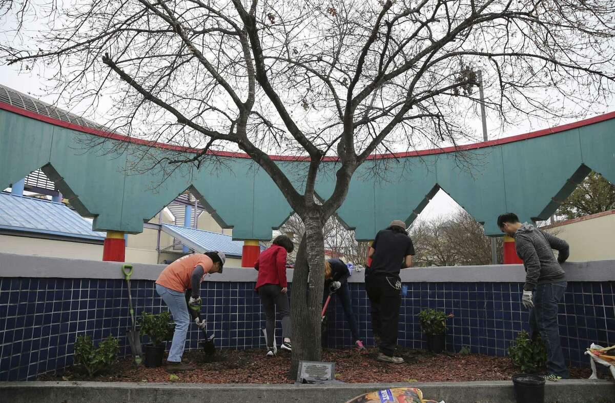 A group of volunteers work to put new plants in an area at Guadalupe Plaza as they join other volunteers for a day of service on Saturday, Mar. 2, 2019. Volunteers were fanned across different sites around the city for the 40 Days of Service campaign sponsored by Catholic Charities of San Antonio. (Kin Man Hui/San Antonio Express-News)