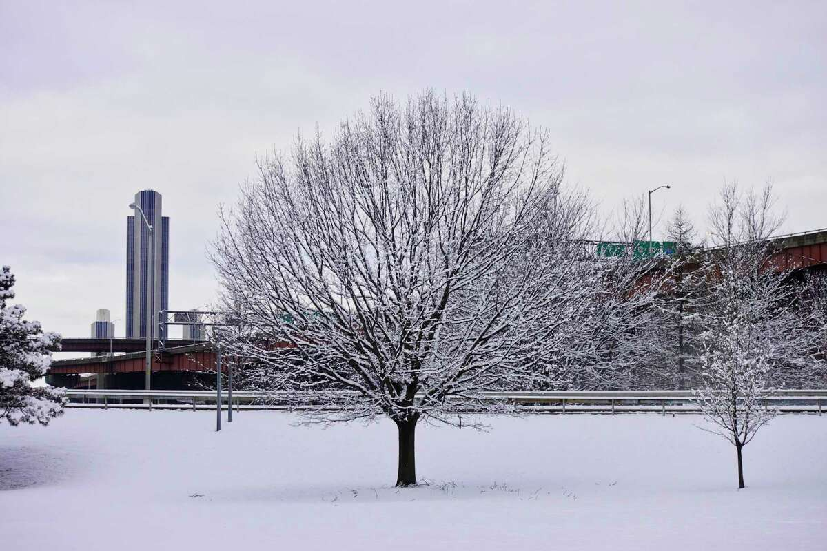 Snow covers tree branches as the city of Albany is seen across the river from Rensselaer on Monday, March 4, 2019, in Rensselaer, N.Y. (Paul Buckowski/Times Union)