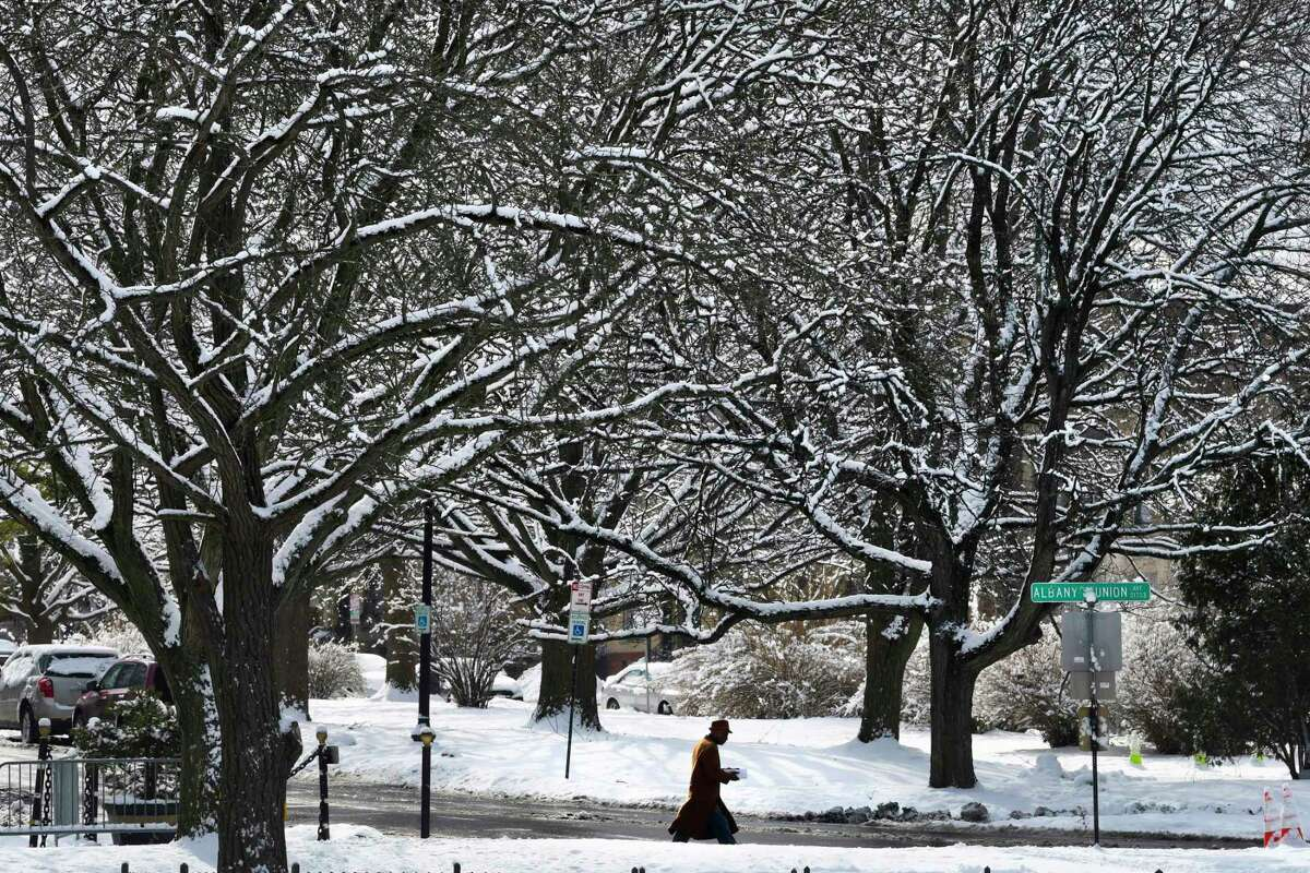 A man makes his way through Washington Park, as tree branches are covered in snow on Monday, March 4, 2019, in Albany, N.Y. (Paul Buckowski/Times Union)
